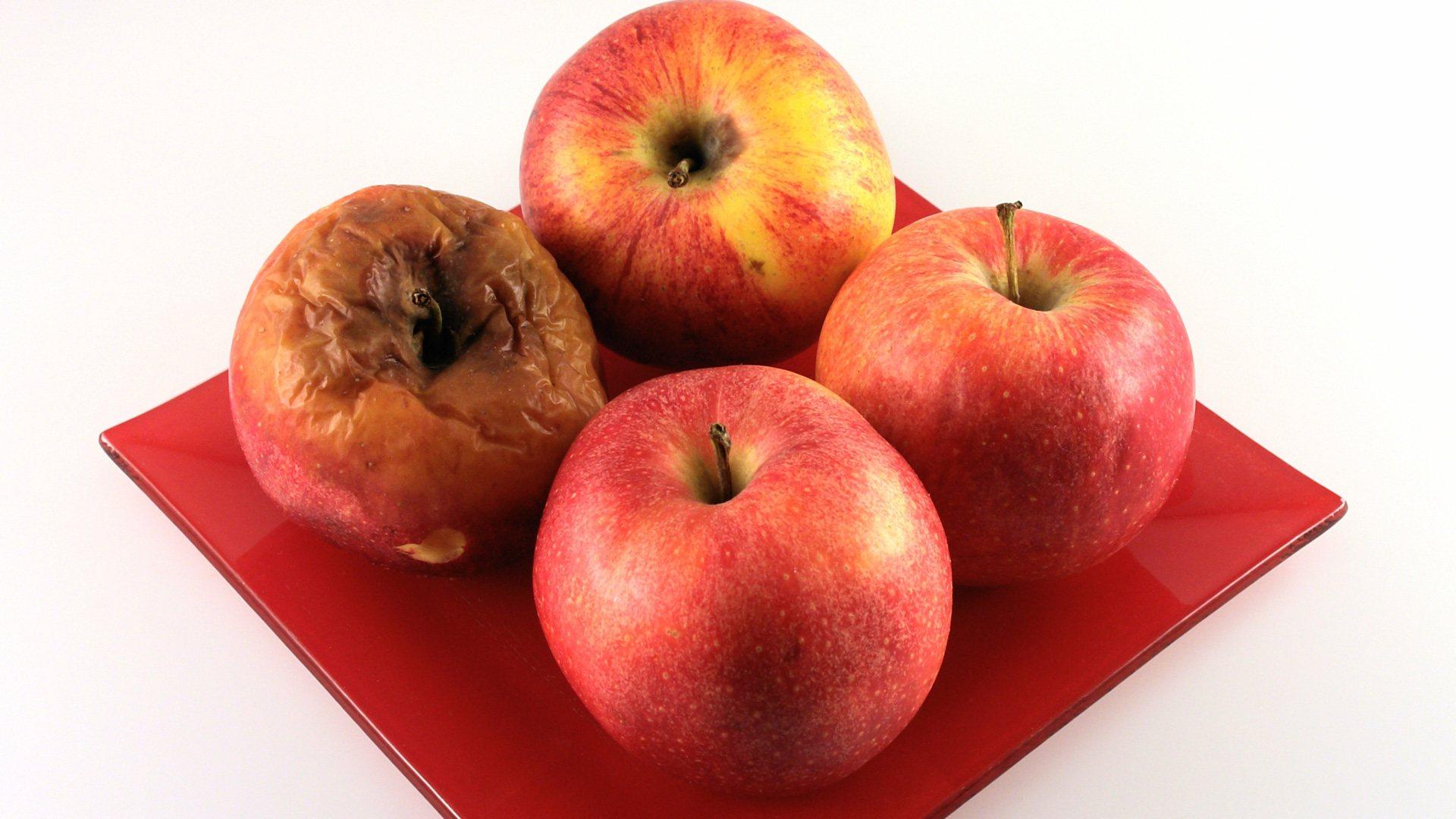 Fruit Storage - The Secret Shenanigans in the Fruit Bowl