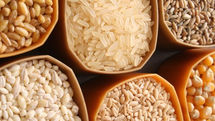 buying whole grains