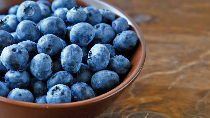 Blueberries improve memory