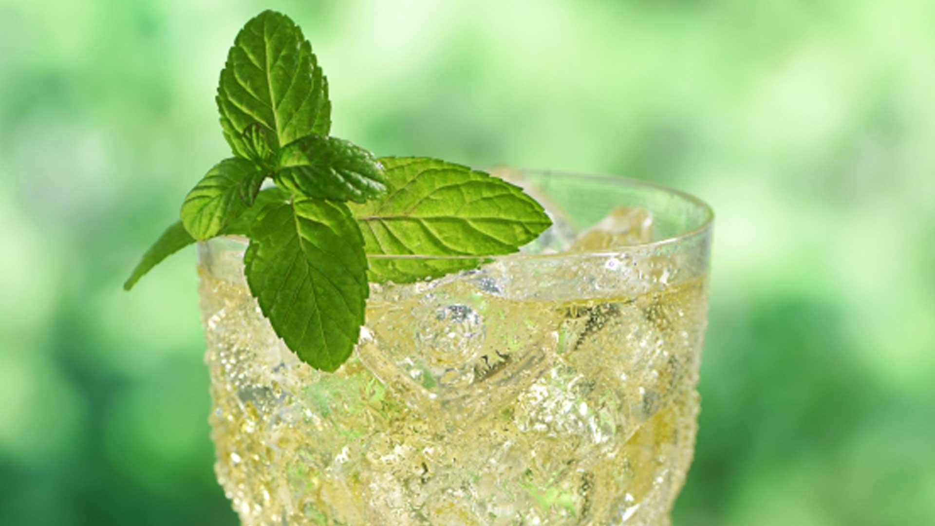 honey green tea recipe