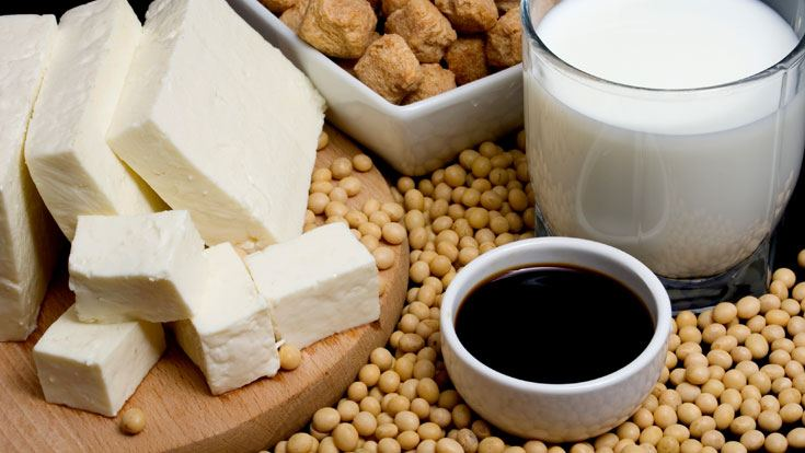 Soy and Health