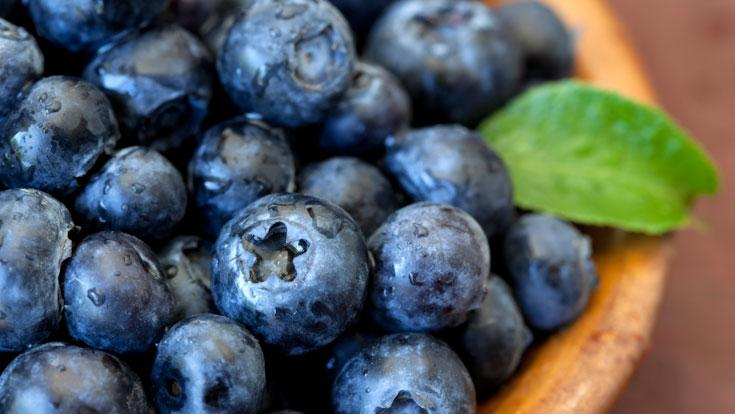 blueberries and alzheimers