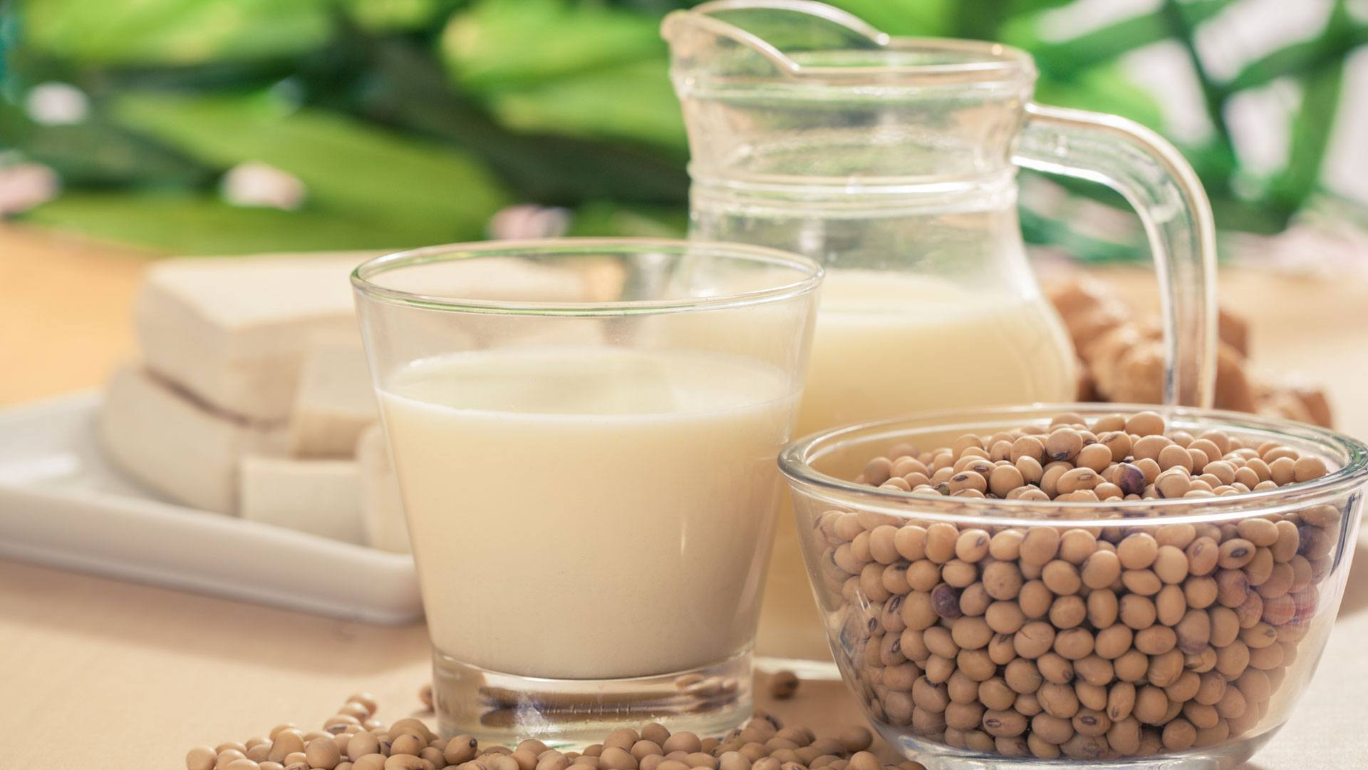 types of soy
